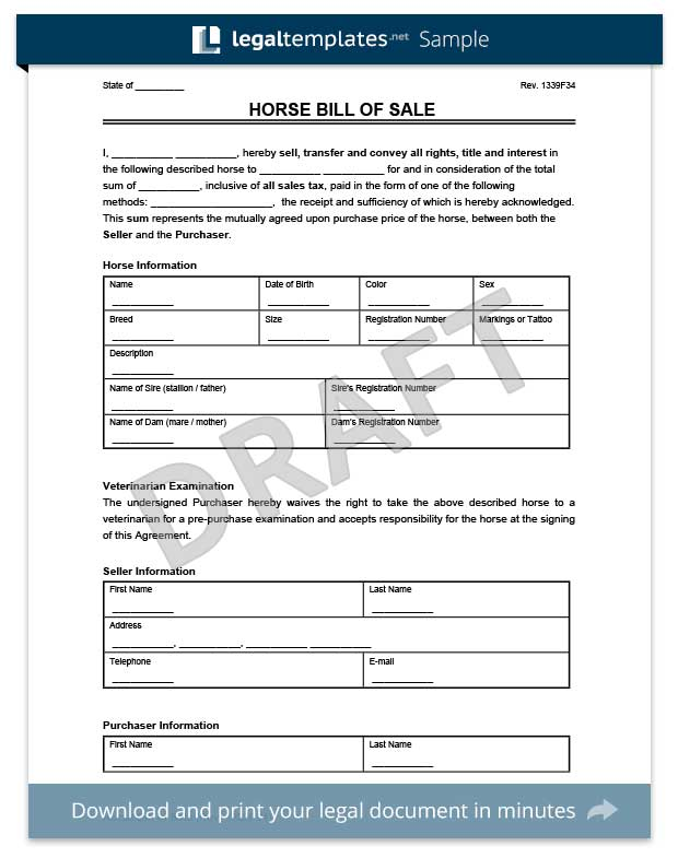 Horse Bill Of Sale Template  Free Horse Bill Of Sale
