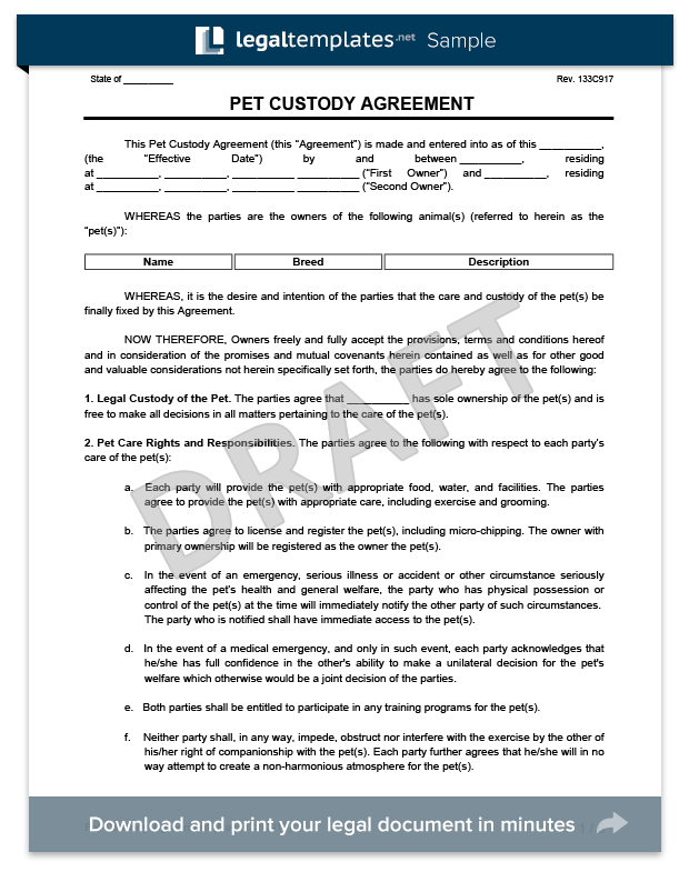 Pet Custody Agreement Create A Pet Custody Agreement Template